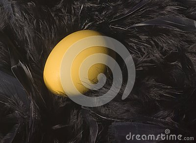 χρυσή φωλιά αυγών