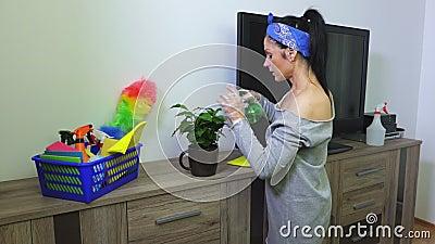 Ψεκάζοντας νερό γυναικών στην άδεια πράσινων εγκαταστάσεων απόθεμα βίντεο
