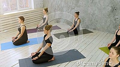 Όμορφες νέες γυναίκες που επιλύουν κάνοντας την άσκηση γιόγκας απόθεμα βίντεο