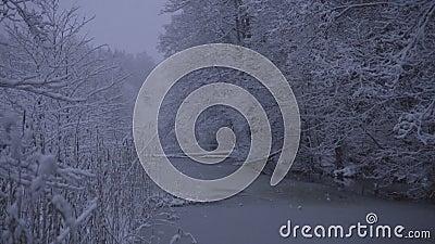Όμορφο βίντεο φύσης και τοπίων του χιονώδους μπλε βραδιού σούρουπου σε Katrineholm Σουηδία απόθεμα βίντεο