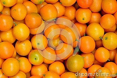 Апельсин Calamondin
