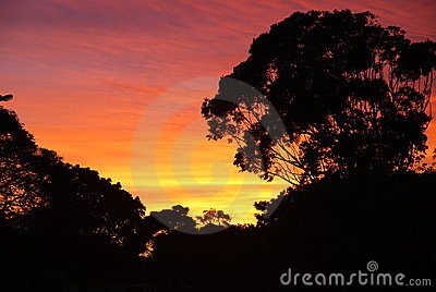 африканский восход солнца неба