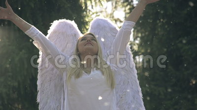 Белый ангел сток-видео
