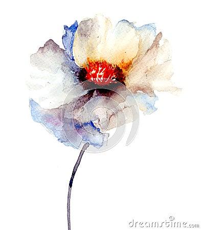Бутон белого цветка