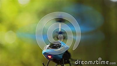 Вертолет RC blue зависает в воздухе в парке HD 1920x1080 сток-видео