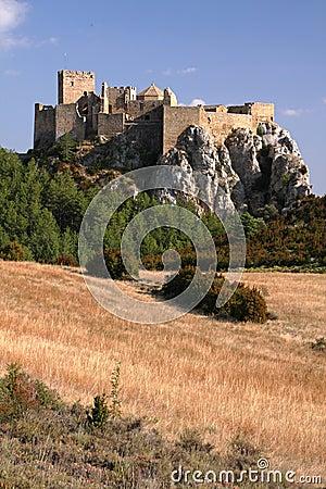 вершина холма замока