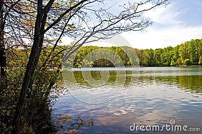 весна озера