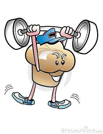 вес булочки человека lifter