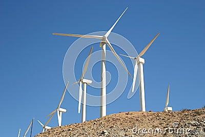 ветрянки