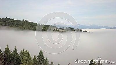 Вид с воздуха на холмы с лесами и полями в горах, в белых облаках в словацких Татрах акции видеоматериалы
