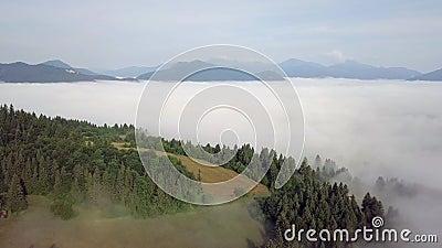 Вид с воздуха на холмы с лесами и полями в горах, в белых облаках в словацких Татрах сток-видео