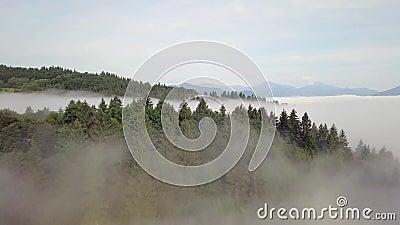 Вид с воздуха на холмы с лесами и полями в горах, в белых облаках в словацких Татрах видеоматериал