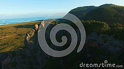 вид с воздуха Летающ над красивые солнечные лесные деревья на утесе Съемка воздушной камеры backhander видеоматериал