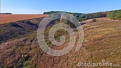 Вид с воздуха поля с промоинами видеоматериал