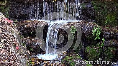 Водопад в Софиевском парке, Уман акции видеоматериалы