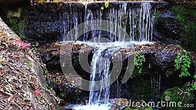Водопад в Софиевском парке, Уман видеоматериал