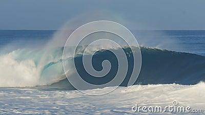Волна Unridden на северном береге Оаху акции видеоматериалы