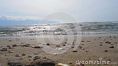 Волны катаются на пляже видеоматериал