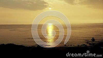 Восход солнца над тропическими пляжем и пальмами острова hawaii видеоматериал