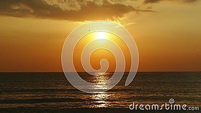 Восход солнца и море сток-видео