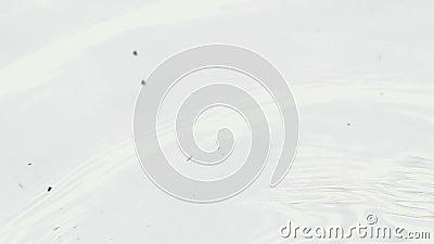 Волнистая чисто вода видеоматериал