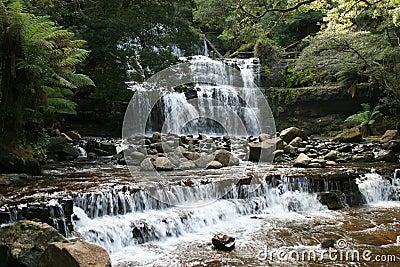 водопад дождевого леса