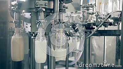 Конвейер молока ооо красногвардейский элеватор крым