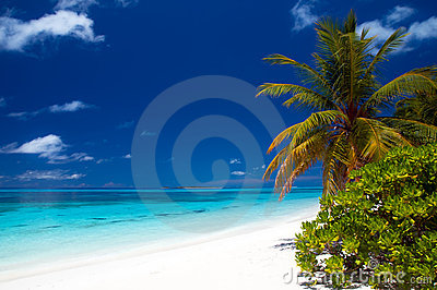 временя пляжа тропическое
