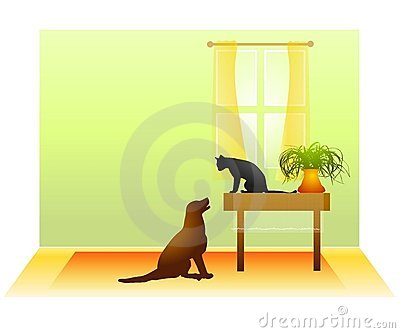 вытаращиться тупика собаки кота
