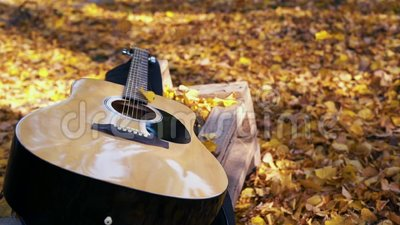 Гитара лежит в лесе на желтых листьях Падение листьев желтого цвета на гитару осенняя пуща видеоматериал