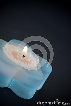 голубая свечка немногая