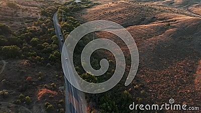 Горизонтальная дорога окружена зелеными деревьями Автомобили едут по шоссе воздушный выстрел видеоматериал