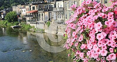 Грандиозное река на Париже, Канаде с цветками в переднем 4K сток-видео