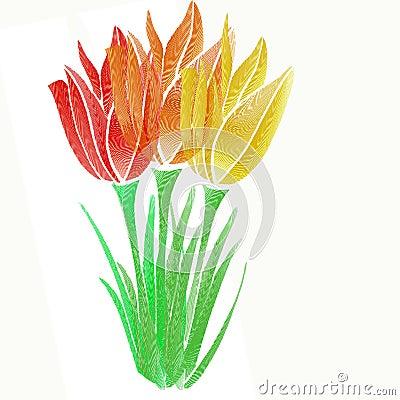 график цветка