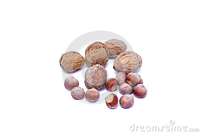 Грецкий орех фундука