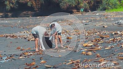 Группа в составе волонтеры очищая вверх пляж Волонтер поднимает и бросает пластиковую погань в сумку environmental сток-видео