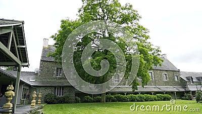 Двор из поместья с зеленым газоном и деревом Действие Зеленое дерево украшает двор старого каменного поместья Страна видеоматериал