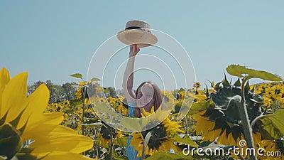 Девушка в поле солнцецвета видеоматериал