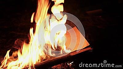 Девушка горит письмо видеоматериал