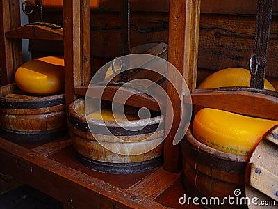делать сыра