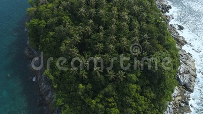 дел Приглаживайте посмотрите вверх трутня снятого надземных пальм в малом необитаемом острове Pu Ko в Пхукете, Таиланде акции видеоматериалы