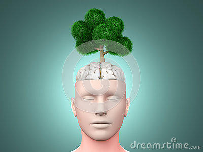 Думайте зеленый цвет