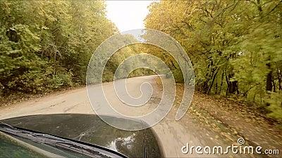 Езды автомобиля через лес осени акции видеоматериалы