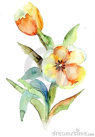 Желтые цветки тюльпанов