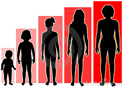 женские этапы роста