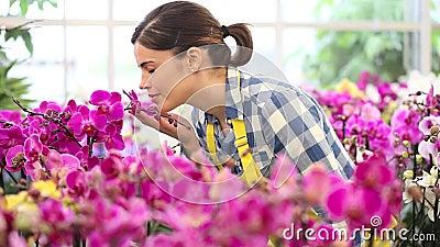 Женщина в саде цветков, касаний орхидея и усмехаться видеоматериал