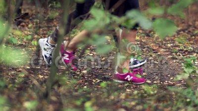 женщина, который 2 побежали в лесе сток-видео