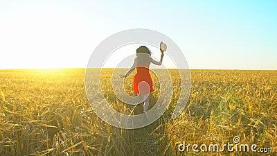 Женщина счастливого путешественника молодая испанская красивая бежать на пшеничном поле летом захода солнца Туризм счастья здоров сток-видео