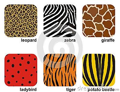 животные печати