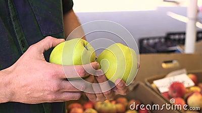 Закройте вверх по взгляду молодого человека выбирая яблока на рынке плодоовощ акции видеоматериалы